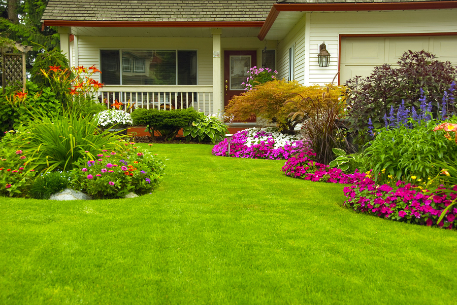 Tips For Beautifying Your Backyard
