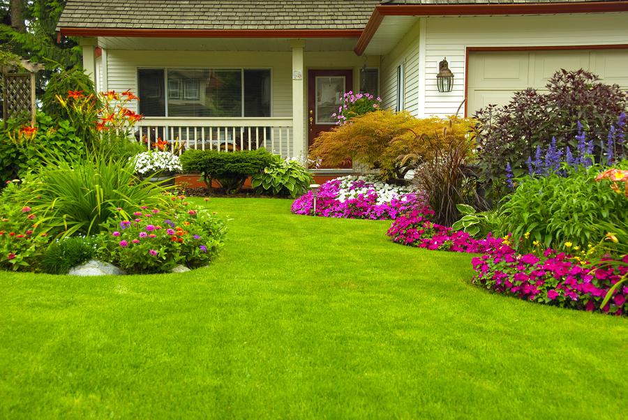 Tips For Beautifying Your Backyard