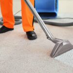 Carpet Nurse – Care for your carpet with ease
